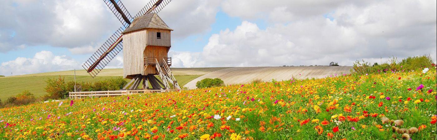 Moulin de Dosches